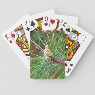 Pine cone tree needles photograph playing cards