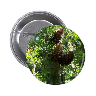 Pine Cones Button