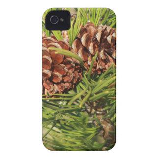 Pine cones Case-Mate iPhone 4 case