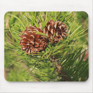 Pine cones mouse pad