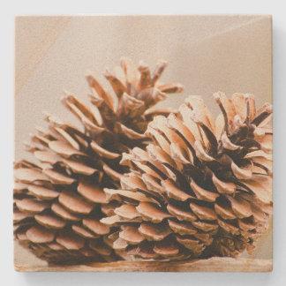 Pine Cones Rustic Country Sandstone Coaster Stone Beverage Coaster