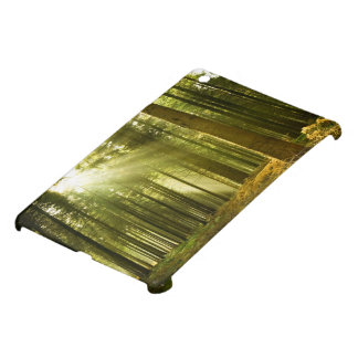 Pine forest with sun shining case for the iPad mini