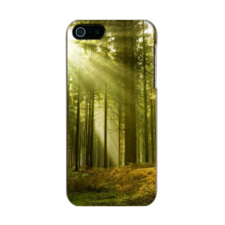 Pine forest with sun shining incipio feather® shine iPhone 5 case