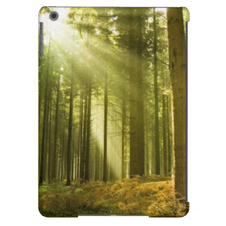 Pine forest with sun shining iPad air case