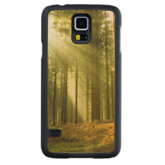 Pine forest with sun shining maple galaxy s5 slim case