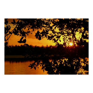 Pine Island Sunset Poster