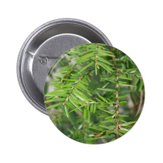 Pine Needles and Branches 6 Cm Round Badge
