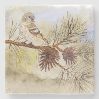 Pine Siskin Coaster