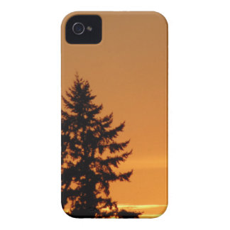 Pine Tree At Sunset iPhone 4 Case-Mate Case