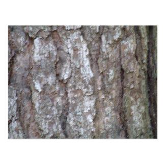 Pine Tree Bark Camo Natural Wood Camouflage Nature Post Card