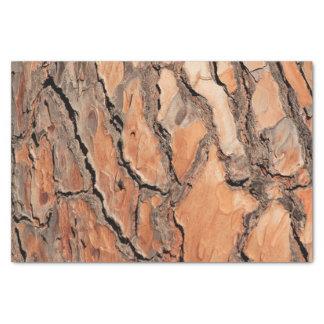 Pine Tree Bark Texture Tissue Paper