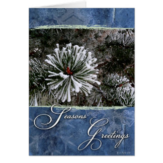 Pine tree in snow-Season's Greetings Card