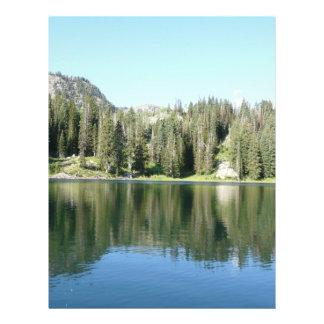 pine tree mirror on lake flyer
