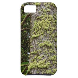 Pine_Tree_Moss iPhone 5 Covers