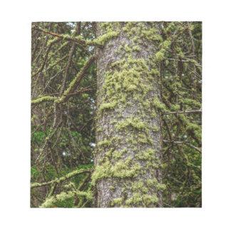 Pine_Tree_Moss Notepad