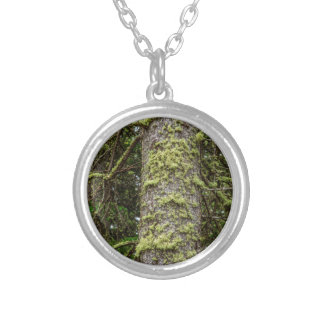 Pine_Tree_Moss Silver Plated Necklace