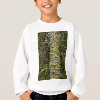 Pine_Tree_Moss Sweatshirt