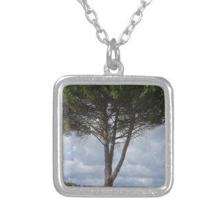 Pine tree jewelry