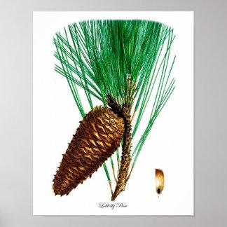 Pine Tree Poster Print #4 Pinecone Home Decor Art