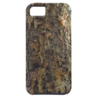 Pine tree resin on the trunk tough iPhone 5 case