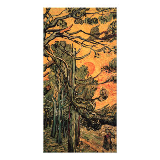 Pine Trees at Sunset by Vincent van Gogh Photo Cards