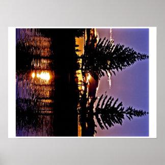 Pine Trees Print