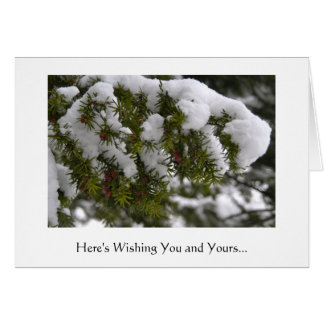 Pine trees with snow and red berries greeting card