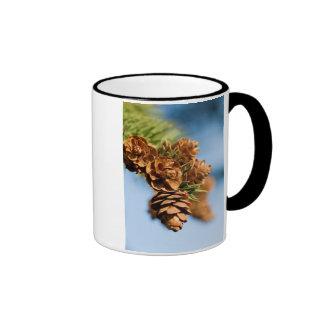 pine without pain mugs