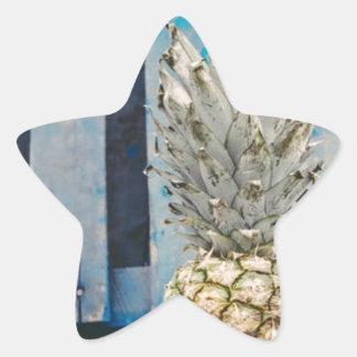 Pineapple By The Beach Star Sticker