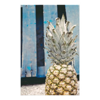 Pineapple By The Beach Stationery