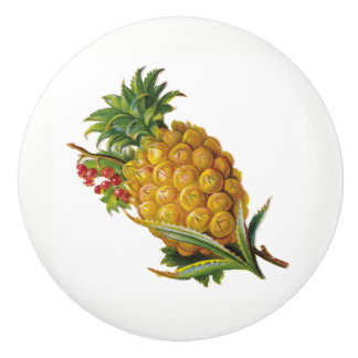 Pineapple Ceramic Knob
