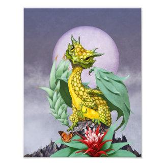 Pineapple Dragon 11x14 Print