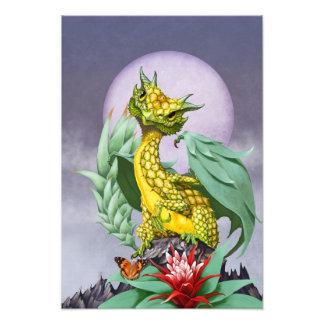 Pineapple Dragon 13x19 Print