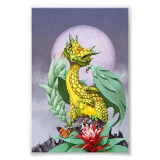 Pineapple Dragon 4x6 Print