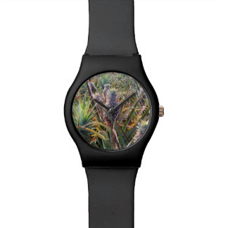 Pineapple Field Watch