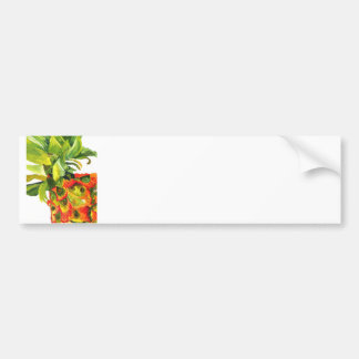Pineapple Painting (K.Turnbull Art) Bumper Stickers
