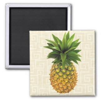 Pineapple Square Magnet