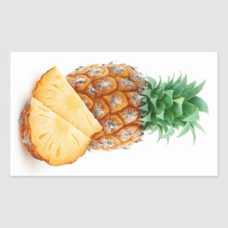 Pineapple with slices rectangular sticker