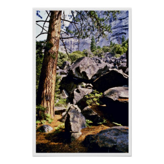 Pines And Glacial Debris, Yosemite Valley Posters