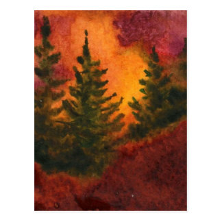 """""""Pines at Day's End #2"""" Country Roads Postcard"""