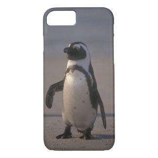 Pinguim africano (demersus do Spheniscus) ou Jacka iPhone 7 Case
