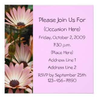 Pink African Daisies Square Floral Invitation