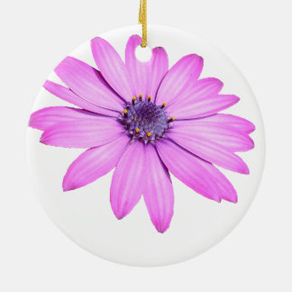 Pink Afrıcan Daisy With Transparent Background Ceramic Ornament