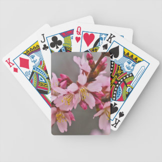 Pink Against A Gray Sky Japanese Cherry Blossoms Bicycle Playing Cards