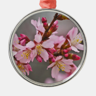 Pink Against A Gray Sky Japanese Cherry Blossoms Metal Ornament
