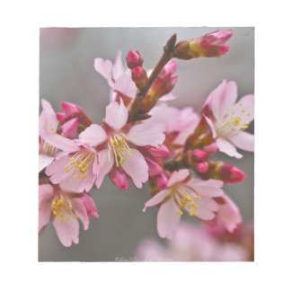 Pink Against A Gray Sky Japanese Cherry Blossoms Notepad