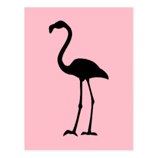 Pink and Black Flamingo Postcard