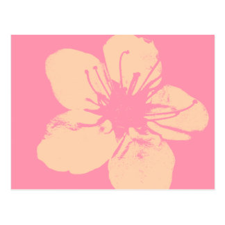 Pink and Cream Apple Blossom Postcard