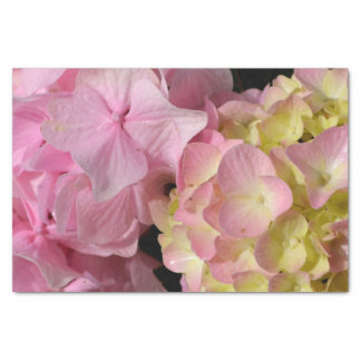 Pink and Cream Hydrangeas Tissue Paper