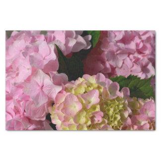 Pink and Cream Hydrangeas Tissue Paper